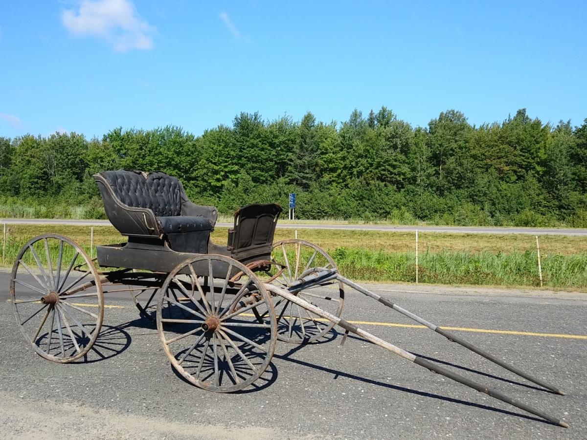Ancienne voiture à chevaux, calèche, buggy 3