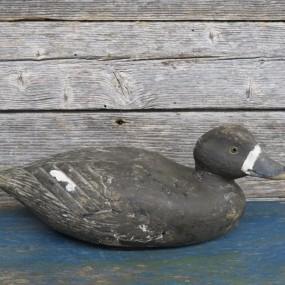 #26990 - 175$ Appelant, canard de bois