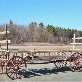 Horses hay wagon