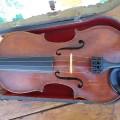 Ancien violon - 5