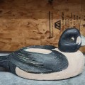 Appelant, canard de bois - 1